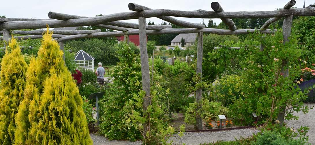 Haven for kredsløb og åndedræt, 14. juli 2015