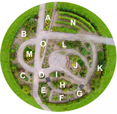 Haven for urin- og kønsveje.
