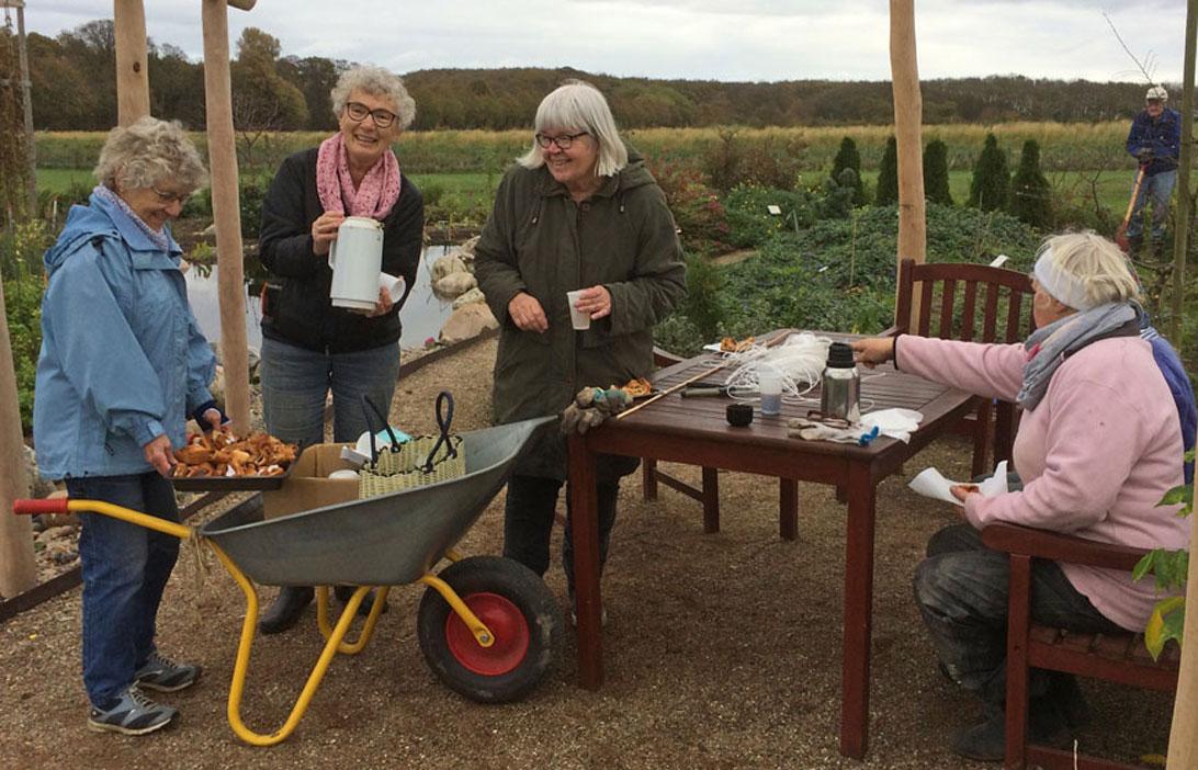 Grethe serverer kaffe og wienerbrød i trillebøren.