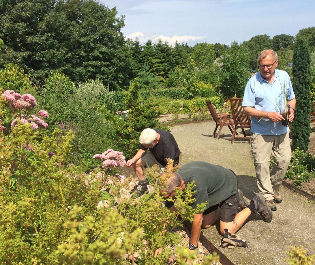 Niels Ove, Poul og Ole D. planter vandplanter i det nye vandløb.