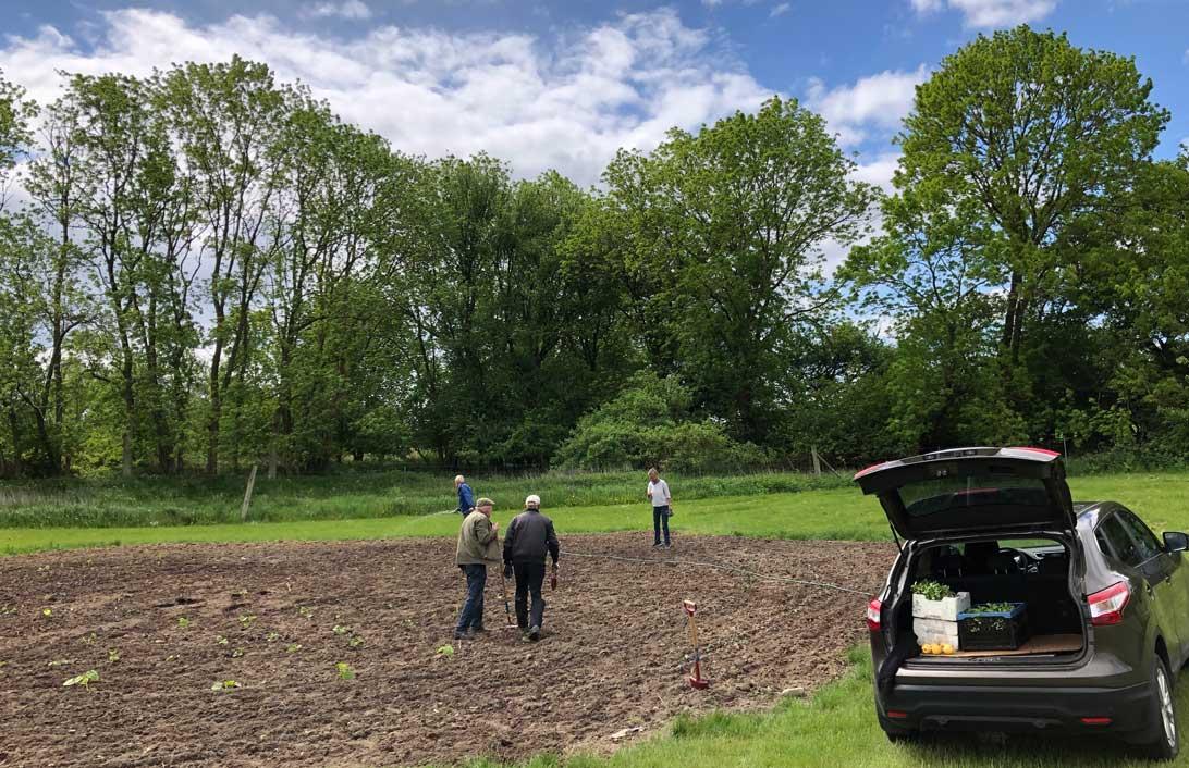 28. maj 2019: Peder, Jens Jakob, Bente og Bjarne planter græskar og solsikker ud i depothaven.